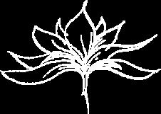 Naturheilpraxis für Ayurveda und andere Naturheilverfahren